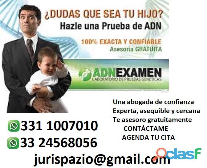 Abogada en materia familiar|Juicios de Paternidad en Guadalajara 3