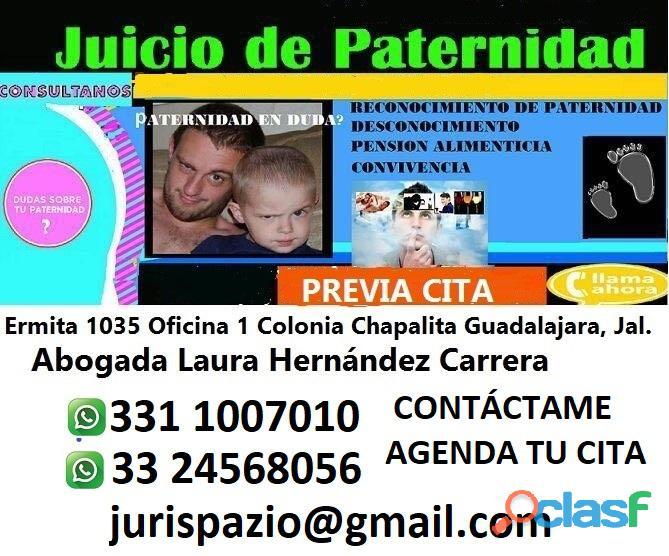 Abogada en materia familiar|Juicios de Paternidad en Guadalajara 2