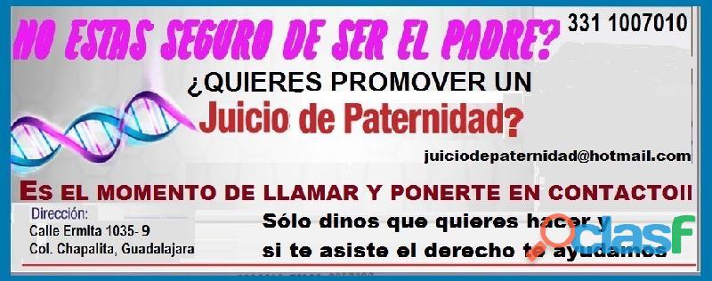 Abogada en materia familiar|Juicios de Paternidad en Guadalajara 1