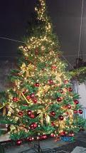 Arboles de Navidad Gigantes 10.5 m 12 m 15 m altura : Centro comercial..Plaza Publica 1
