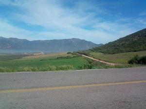 Vendo ruta vino terreno 1230 mts frente rancho el tule