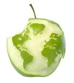 Inglés de negocios - ¿listo para comerte al mundo?