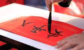 Clases y asesorías (chino mandarín)