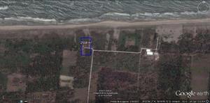 Terreno de 2500 m² a orilla de playa en jalapita, centla