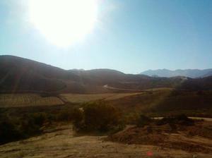 Terrenos ruta vino de 1230 metros fte a rancho el tule