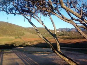Vendo terrenos ruta vino frente a rancho el tule vinicola