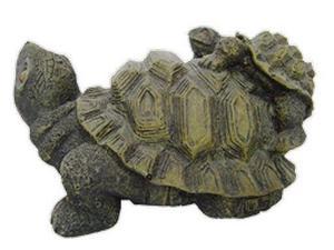 Adorno pecera tortuga anuncios junio clasf for Peceras para tortugas
