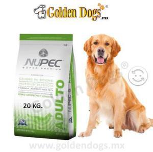 Alimento croquetas nupec adulto 20 kg golden dogs