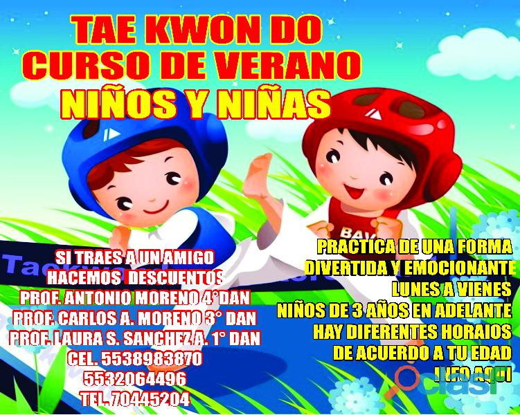 Curso de verano de taekwondo