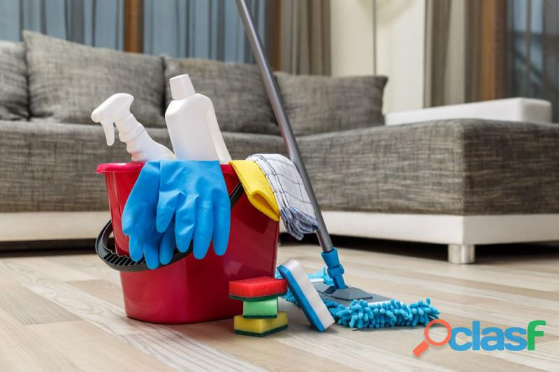 Domesticas para limpiar tu departamento