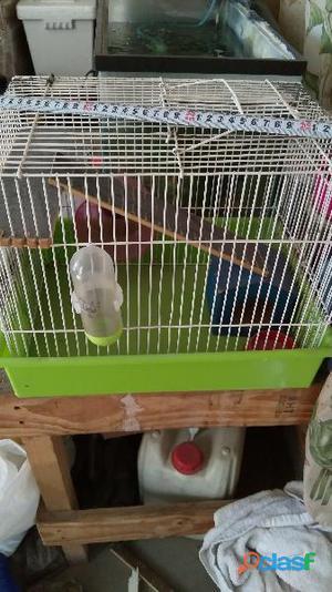 Jaula desmontable para hamster cambio