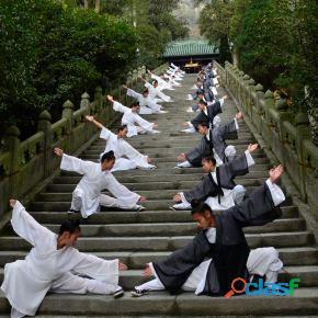 Artes marciales kung fu sanda y más
