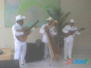 Conjunto jarocho cdmx