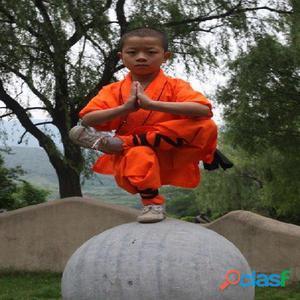 Clases de kung fu y tai ji
