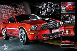Ford mustang - cartel (shelby gt500 cobra - easton chang co