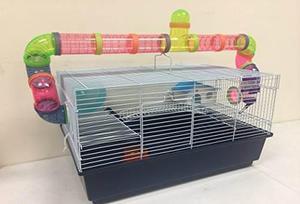 Nueva grande ratones hábitat hámster roedores ratón jerbo