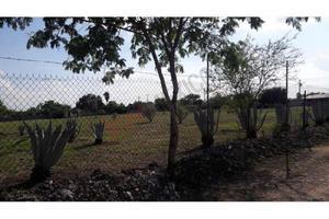 Terreno campestre en venta de 5,000m2 en los girasoles,