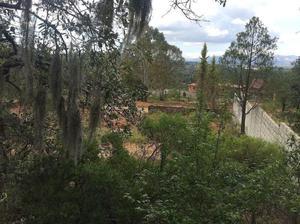 Terreno ubicado cerca del centro de Huasca