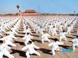 Kung fu shaolin , sanda, tai ji