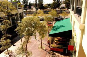 Renta de locales comerciales / oficinas en plaza picacho