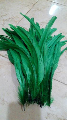50 plumas de gallo largas verde 30-35cm