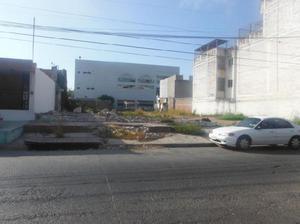 Terreno comercial en renta ubicado en blvd. rosales centro