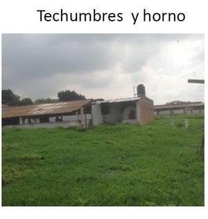 Venta de granja porcicola, Tlajomulco de zuñiga