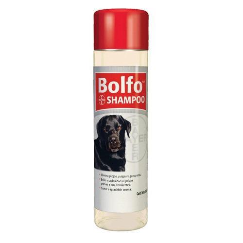 Shampoo bolfo pulgas piojos garrapatas para perros gatos