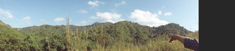 43 hectareas en cerro vista al mar lo de marcos nayarit