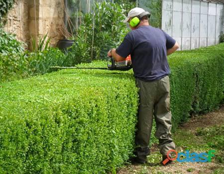 Servicios de jardinería getsemaní