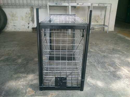 Trampa jaula para gato montes tejon perro animales