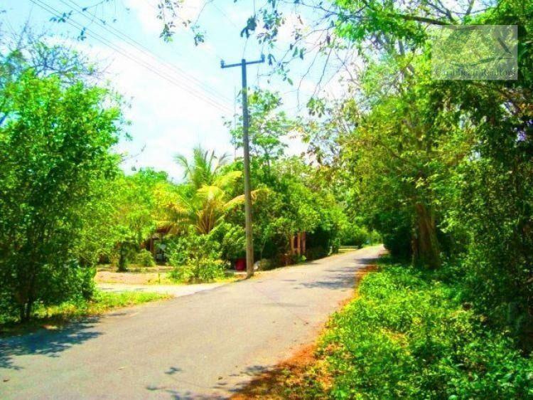 Terrenos en venta en ruta de los cenotes puerto morelos /