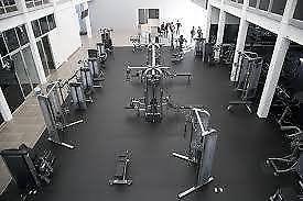 Renta de gimnasio con ó sin equipo acreditado/funcionando