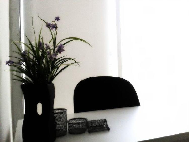 Renta oficinas totalmente equipadas al mejor precio en