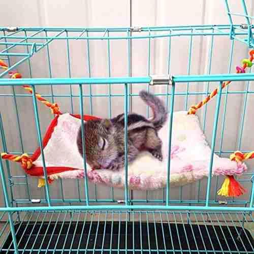 Rypet pequeños animales hámster hamaca colgada la jaula
