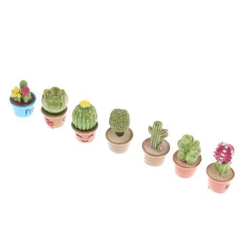 7 piezas 1:12 plantas suculentas con maceta en miniatura dec