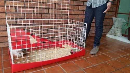 Jaula nueva 1/2 piso para conejo. base roja reja blanca