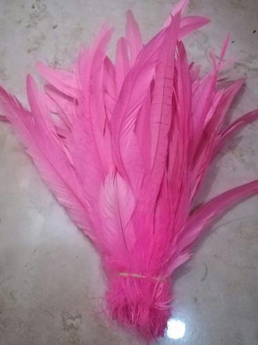 50 plumas de gallo color rosa, 25-30 cm, no incluye envio