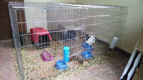 Jaula corral para conejos con techo 75cm alto
