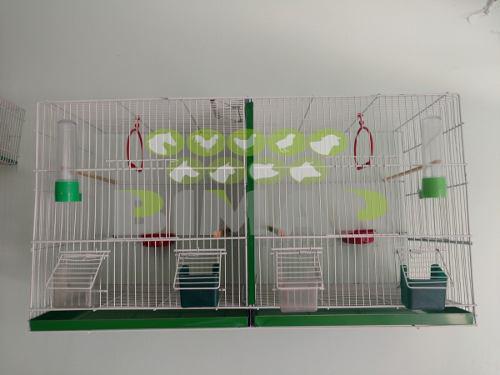 Jaula cria canarios con accesorios voladora #2 con envío