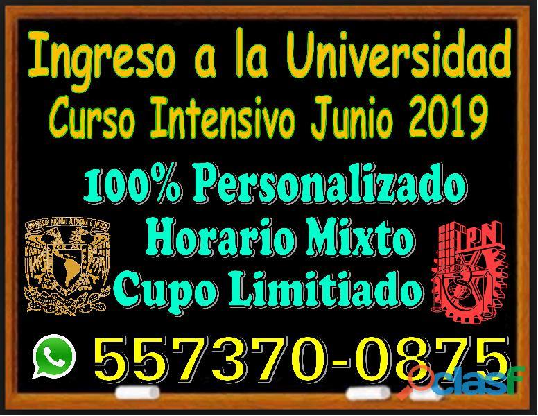 Curso intensivo universitario 2019