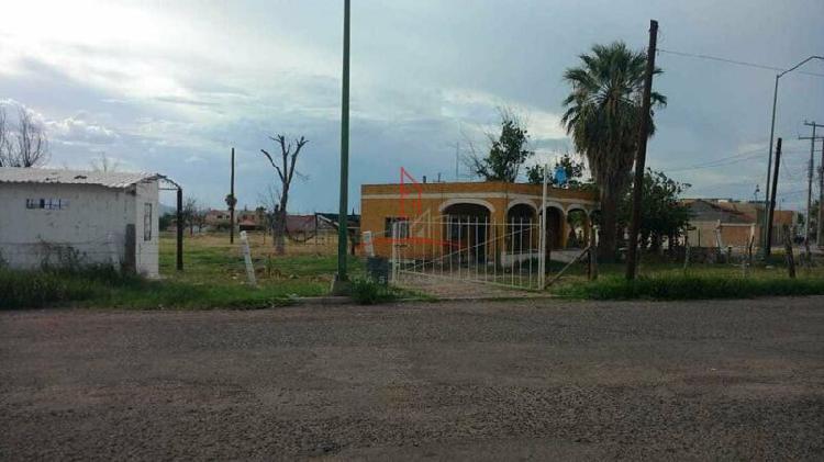Terreno comercial renta sector sur, delicias 45,000