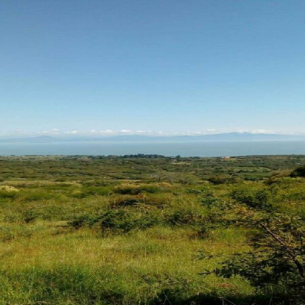 Preventa de terrenos fracc vista real (con vista a la laguna