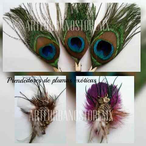 Prendedores de plumas faisán, guinea, perdiz pavo