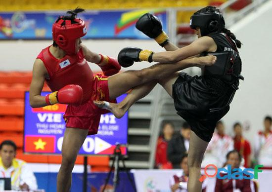Kung fu, sanda y tai chi