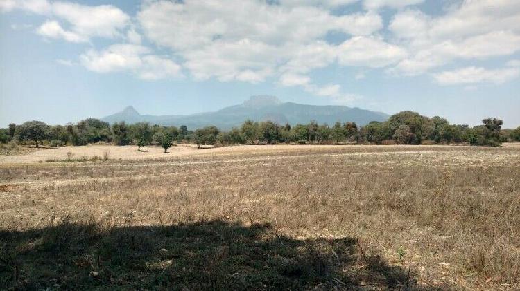 Terreno 2 hectáreas siembra maíz zitlaltepec, tlaxcala