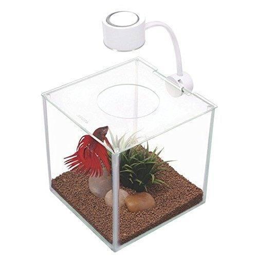 Acuario pez beta pecera con luz 3.4 litros +envio gratis
