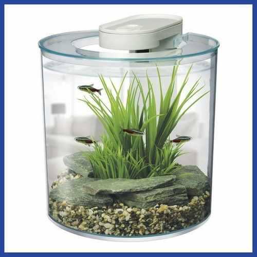 Pecera acuario 10 lts en forma de cilindro * envío gratis