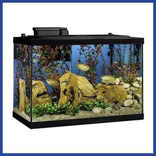Pecera acuario 75 lts con techo de led filtro * envío