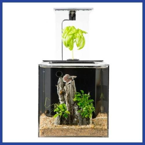 Pecera acuario filtrado con plantas luces led * envío